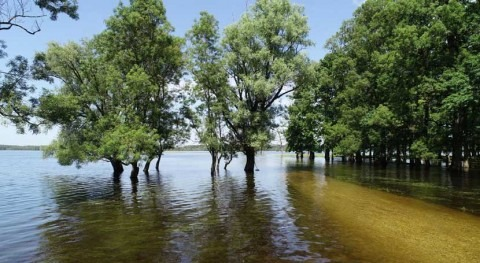 Croatia completes updating of its Wetlands of International Importance