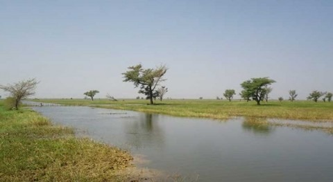 Burkina Faso and Mali declare the Sourou Valley as Transboundary Ramsar Site