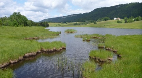 France extends protection of Jura peatlands
