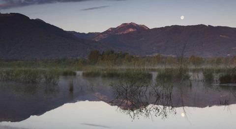 Germany designates restored peatland complex