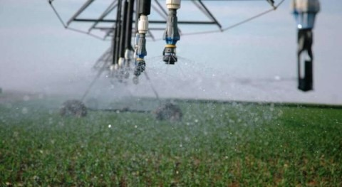 Recent paper examines consequences of groundwater depletion to agriculture