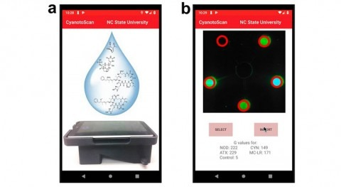 Researchers create first portable tech for detecting cyanotoxins in water