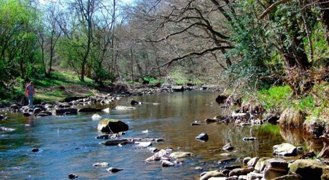 Northumbrian Water and Environment Agency help River Derwent flourish, UK