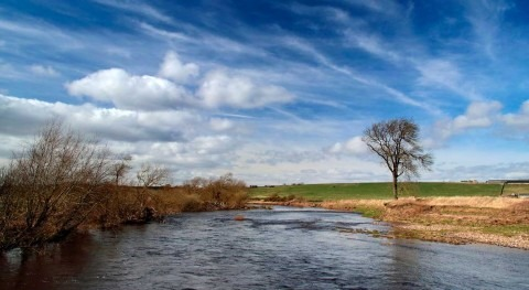 Letting rivers run wild could reduce UK flooding – new research