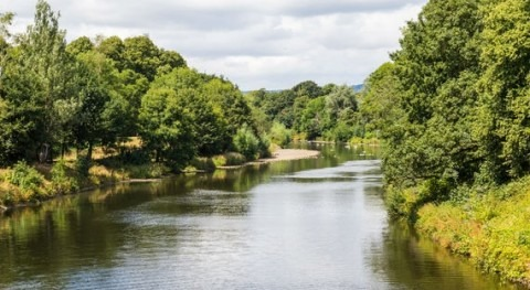 Toxic chemicals hindering the recovery of Britain's rivers