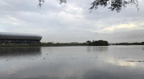 Bacteria can help defuse toxic dioxin in Passaic River