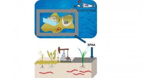 Scientists use nano technology to remove diesel fuel from water and soil