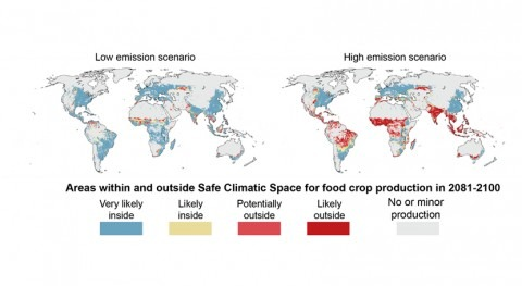 Climate change threatens one-third of global food production