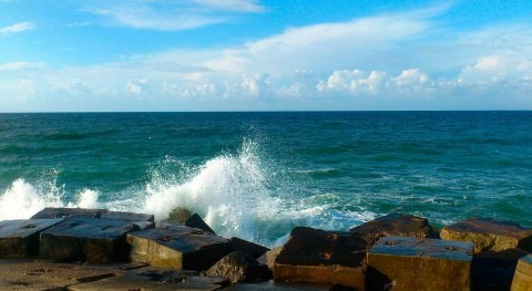 Egypt is considering collaborating with the private sector in seawater desalination
