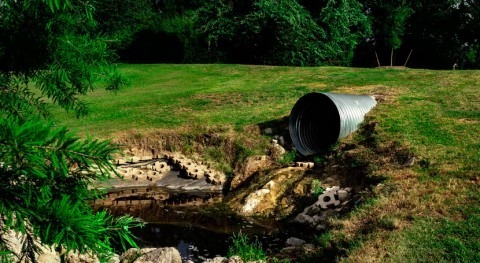 Scientists validate new technology that transforms sewage sludge into fertilizer more efficiently