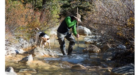 Rare earth elements and old mines spell trouble for Western U.S. water supplies