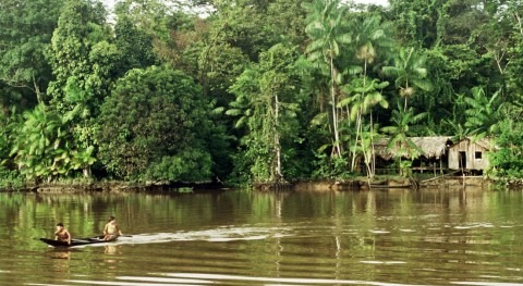 Where is the source of the Amazon river?