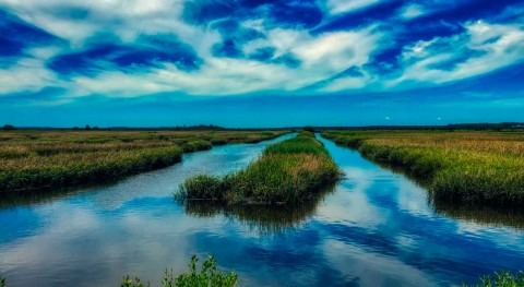 Will marshland keep up with rising seas? Study finds clues in the sediment