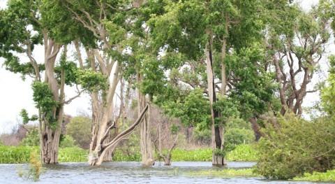 Cambodia designates Stung Sen as wetland of international importance