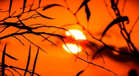Harnessing sunlight to pull hydrogen from wastewater