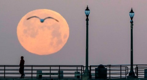 twist of this supermoon: expect flooding, but lunar cycle is masking effects of sea level rise
