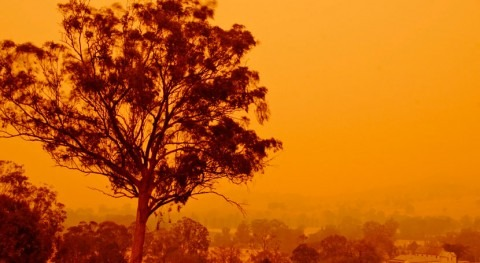 Drinking water under threat: water contamination risks this bushfire season