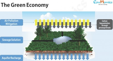 Carbon economy & tax free cities