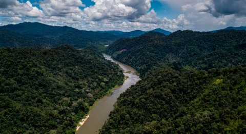 Accelerating renewable revolution can achieve global climate goals without damming world's rivers