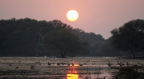 India adds four wetlands to the Ramsar List