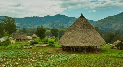 Timor-Leste: Team Europe - EIB finances water and forestry projects to support development