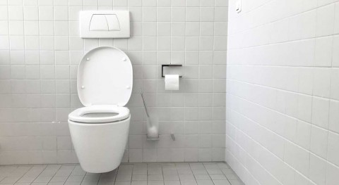 Dual-flush toilets found to be more prone to leaks