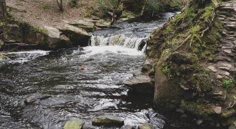 The Environment Agency reviews the environmental performance of England's water companies