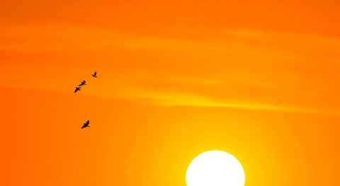 Extreme heat warning: what first-ever Met Office alertmeans
