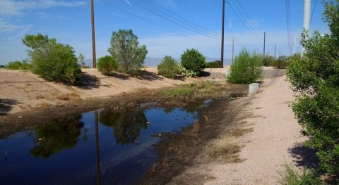 Urban development reduces flash flooding chances in arid West