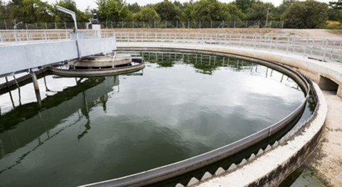 Model filter system removes antibiotics from wastewater