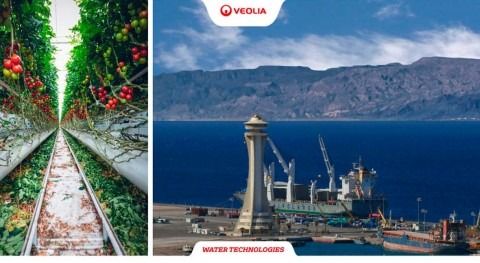 Veolia to expand crystallization capacity at leading potash fertilizer plant in Jordan