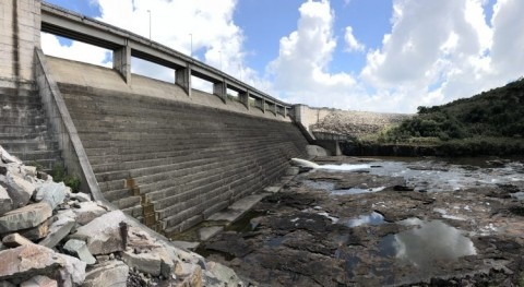 In Brazil, many smaller dams disrupt fish more than large hydropower projects