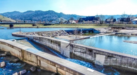 Severn Trent imports Brazilian bugs to treat wastewater