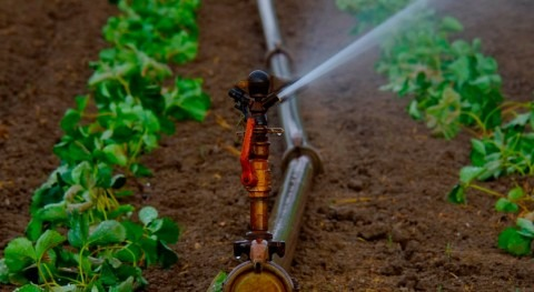 Water reuse for agricultural irrigation: European Council agrees general approach