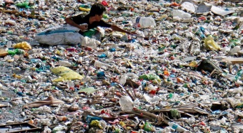 New WHO report says microplastics don't appear harmful to humans
