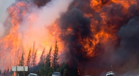 How to fight wildfires and climate change with wetlands
