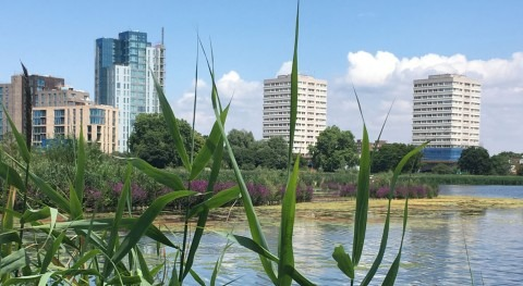 Thames Water again recognised as global leader for sustainability