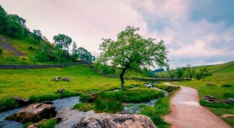 Yorkshire Water launches solar power framework tender