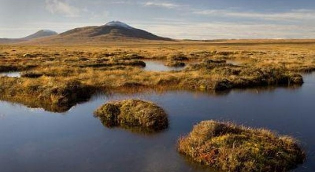 Human activity means UK peatlands contribute to climate change