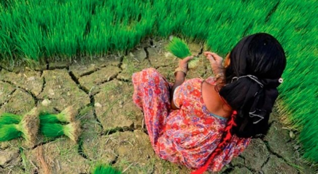 Climate impacts are becoming an increasingly urgent reality, says report