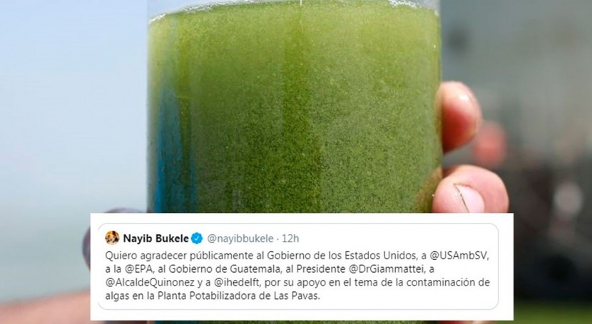Drinking water crisis in Salvador: IHE joins Rapid Response Team to combat algal bloom