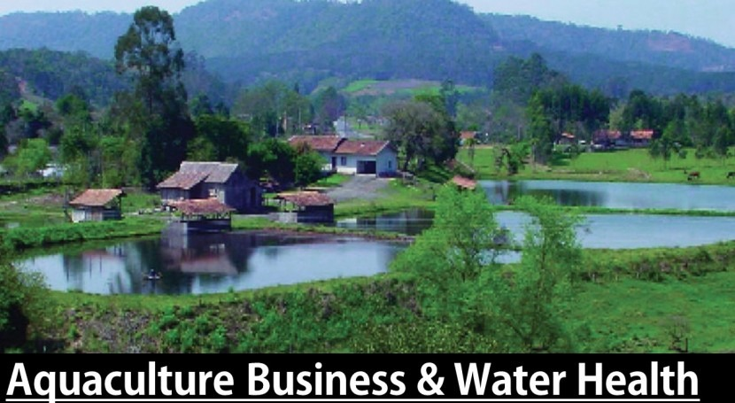 Aquaculture business & water health