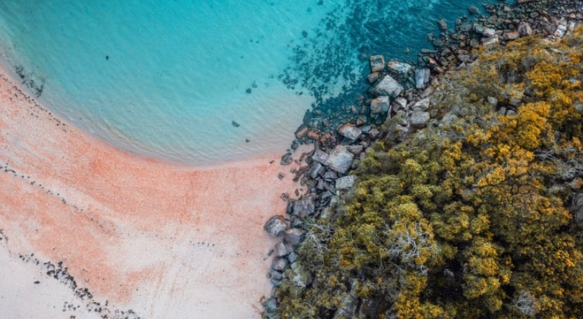 Australia's pristine beaches have poo problem