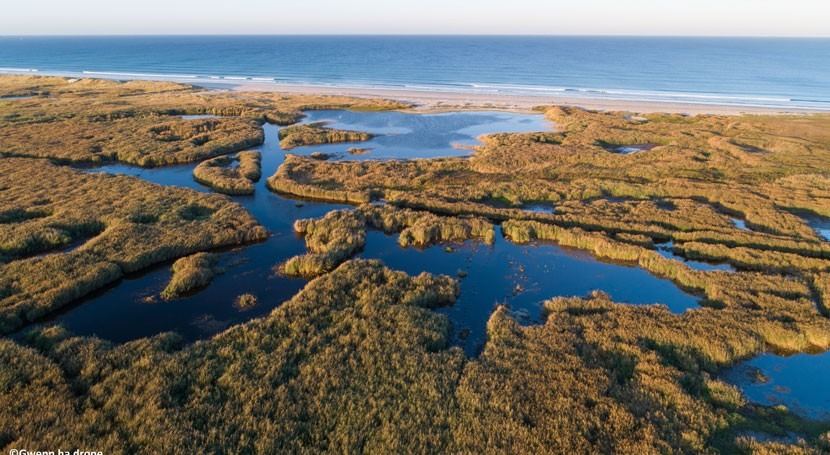 France adds coastal wetland in Brittany to the List of Wetlands of International Importance