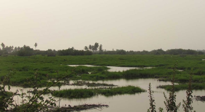 Benin extends two Ramsar Sites to cover entire coastal area