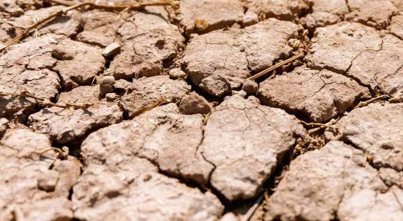 U.S. facing climate-driven megadrought, study reveals