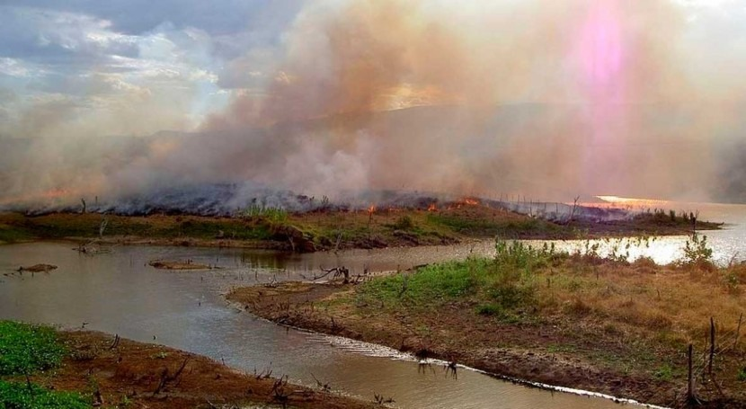Black carbon found in the Amazon River reveals recent forest burnings