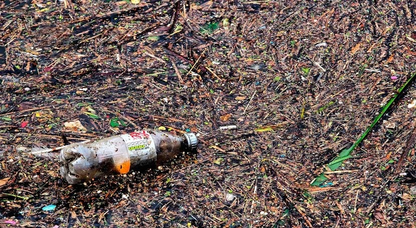 Plastic pollution in the Great Lakes is growing concern to ecosystems and human health