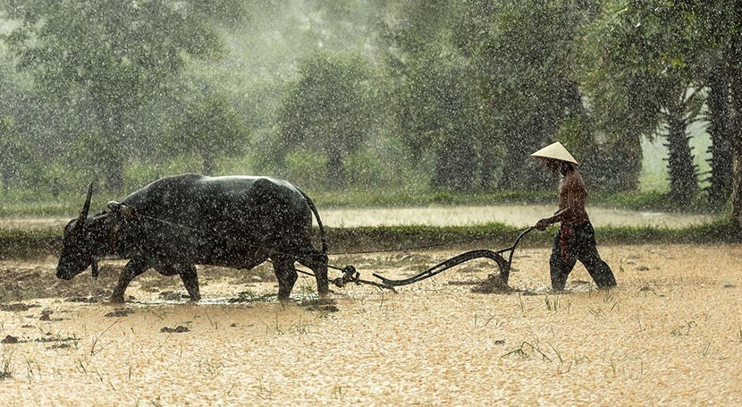 Thailand taps groundwater resources as hot season drought looms