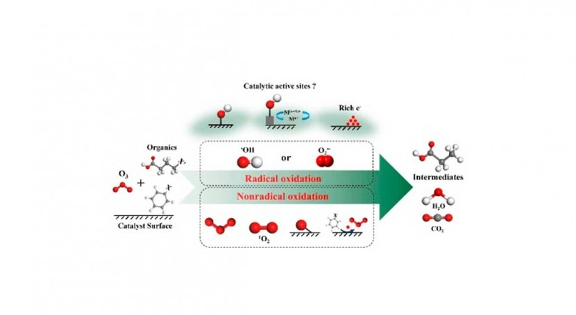 Heterogeneous catalytic ozonation: promising method for water purification
